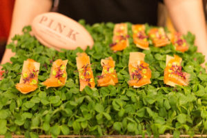 Salmon canapes served on a bed of watercress served at Thomas Pink Corporate networking event